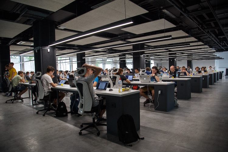 Modern open plan office occupied by workers on laptops